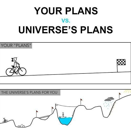your plans or the universe's plans